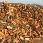 Még több akác tüzi fa vásárlás
