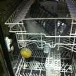 Whirlpool inox 9 terítékes mosogatógép fotó